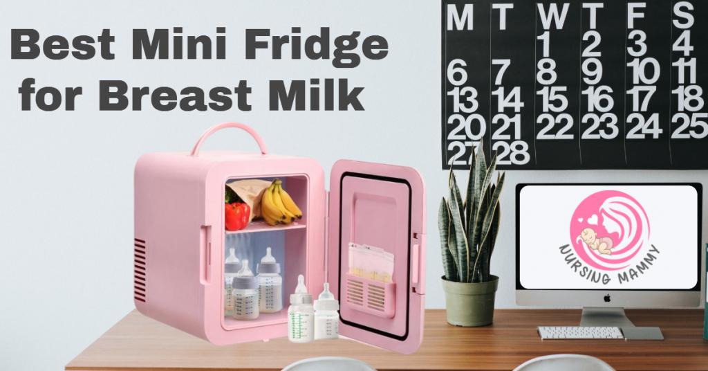 Portable Mini Fridge for Breastmilk